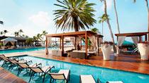Børnevenlige hotel Divi Aruba All Inclusive.