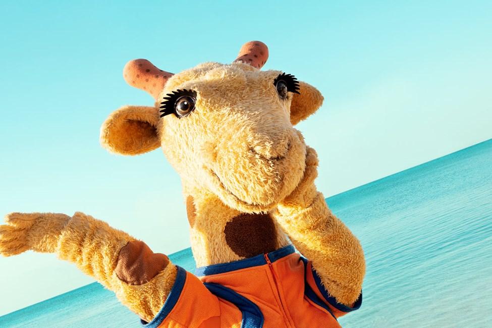 Mød nysgerrige Lollo på Sunwing Kamala Beach