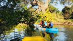 Med kajak på Gambiafloden (kan bestilles hjemmefra)