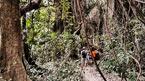 Baobab Island - Sita Joye (kan bestilles hjemmefra)