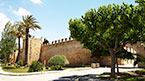 Oplev mere af Mallorca (kan bestilles hjemmefra)